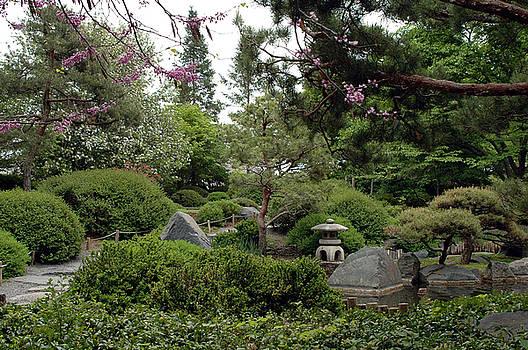 Japanese Garden III by Kathy Schumann