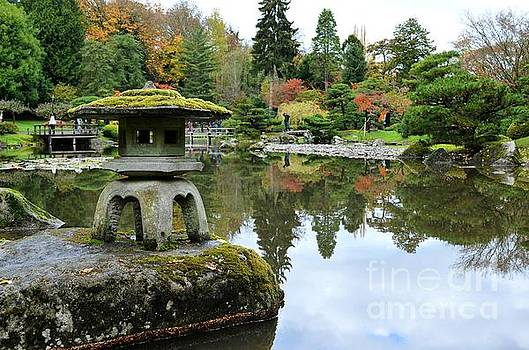 Japanese Garden by Kiana Carr