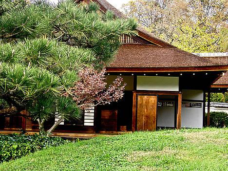 Japanese House by Ruthanne McCann