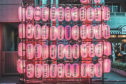 Japanese Lanterns by Leslie Trotter
