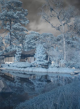 Japanese Tea Garden Infrared Right by Joshua House
