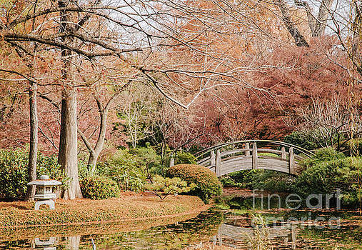 Japnese Garden in Fall by Iris Greenwell