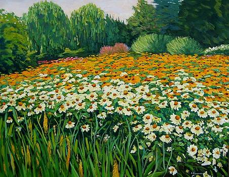 Jardin d'echinacea by Liliane Fournier