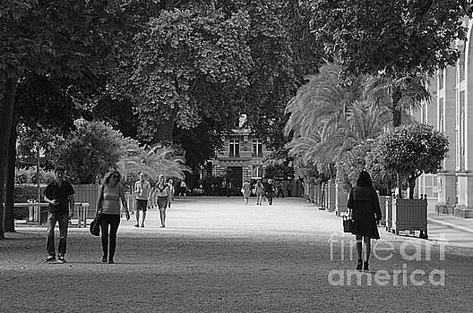 Jardin Du Luxembourg by Andy Thompson