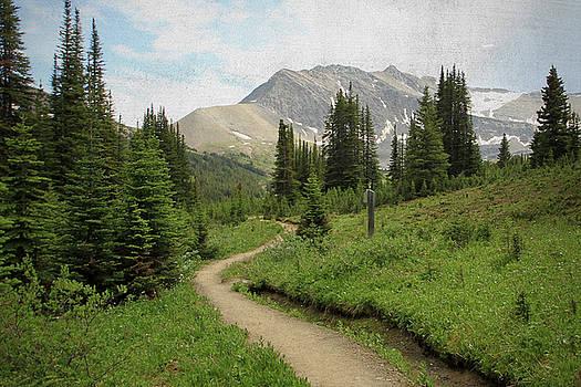 Kathy Stanczak - Jasper National Park
