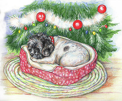 Jasper's Christmas by Peggy Wilson