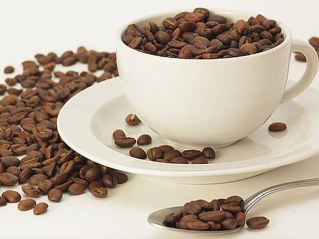 Java Beans by Valerie Morrison