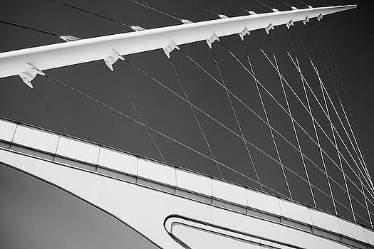 Javelin by Bernice Williams