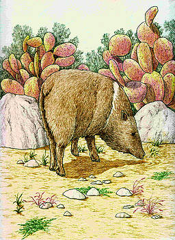 Javelina 2 by Theresa Higby