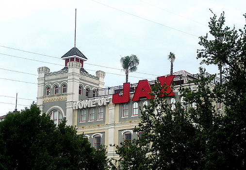 Jax Beer by Journey Ilyse