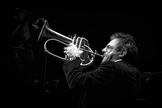 Jazz by Alessia Cerqua