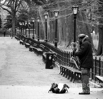 Wilko Van de Kamp - Jazz in Central Park