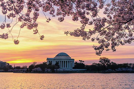 Jefferson Memorial at Sunrise with Blossoms by Craig Szymanski