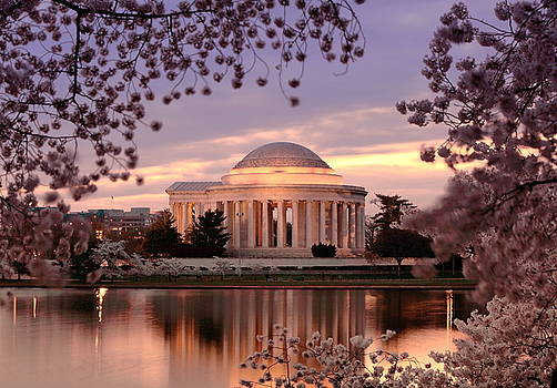 Jefferson Memorial Cherry Blossoms 1 by Scott Fracasso