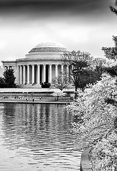 Jefferson Memorial Cherry Blosum time by Paul Seymour