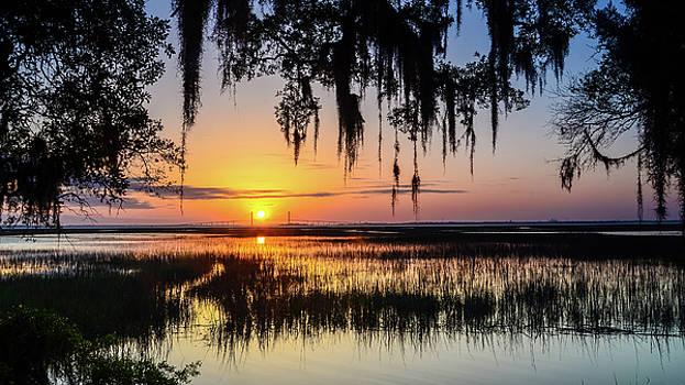 Jekyll Island Sunset Through The Spanish Moss by Robert Stephens