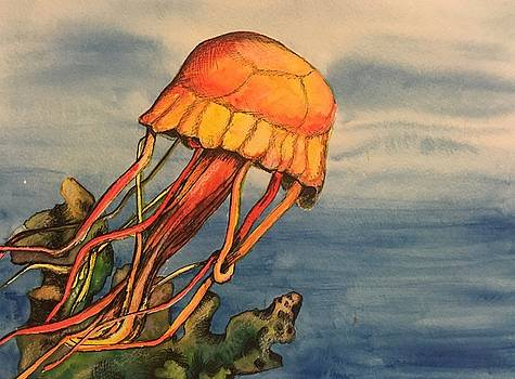 Jellyfish  by Amy Brown