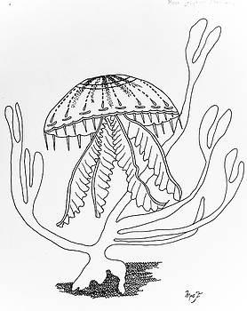 Jellyfish by Dean Italiano