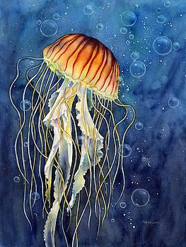 Hailey E Herrera - jellyfish
