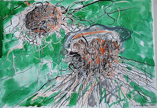 Jellyfish by Zolita Sverdlove