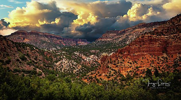 Jemez Mountain by Tony Lopez