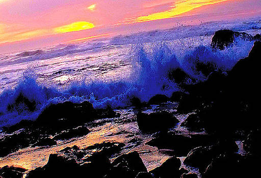 Jenner by the Sea Sunset by Kathleen Storey