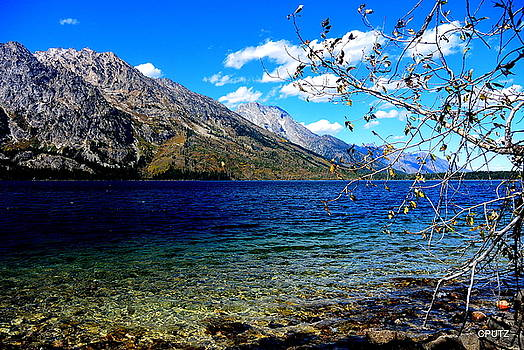 Jenny Lake by Carrie Putz