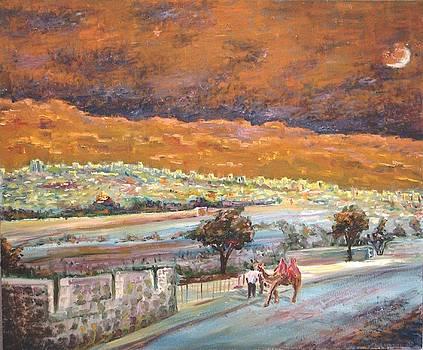 Jerusalem Night by Alexander Bukhanov