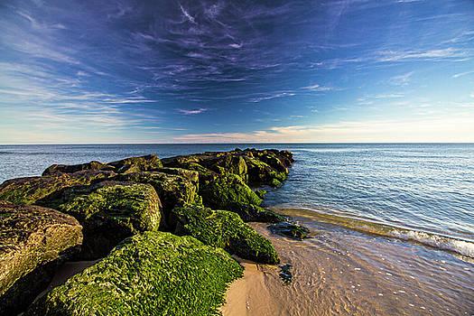 Jetty Four Mossy Rocks by Robert Seifert
