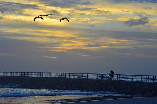 Jetty sunrise with Pelicans and cyclist 12-27-15 by Julianne Felton