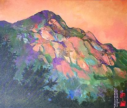 Jewel Mountain 1. by Caroline Patrick