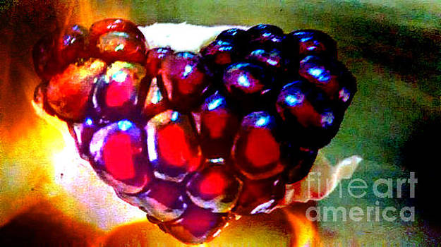 Jeweled Heart In Light And Dark by Genevieve Esson
