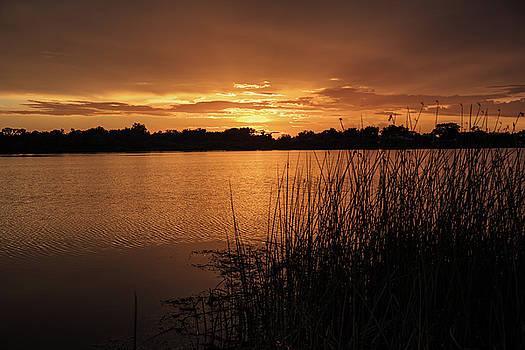 Jigg's Sunset by Kelly Kennon