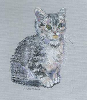 Olga Kaczmar - Jimmy the Cat