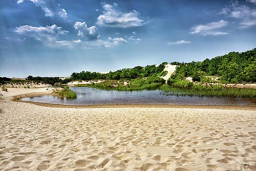 Jockey's Ridge State Park - North Carolina by Brendan Reals