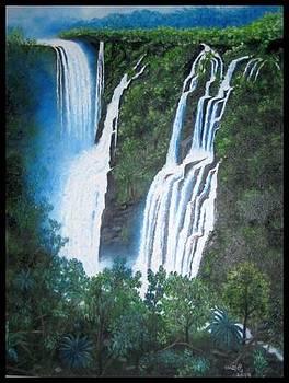 Jog Falls 2 by Usha Rai
