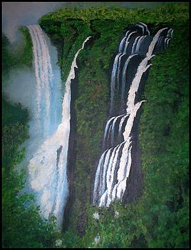 Jog Falls by Usha Rai