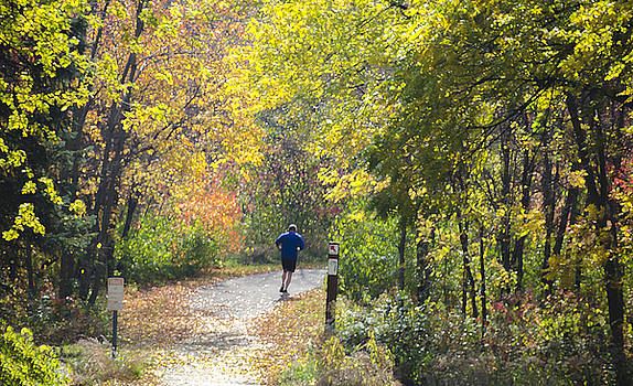 Jogger on Nature Trail in Autumn by Lynn Hansen
