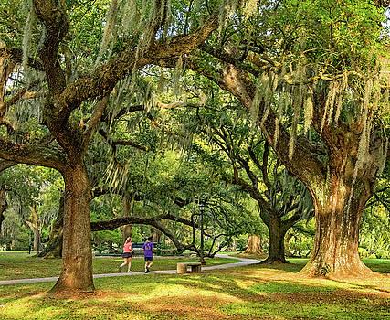 Steve Harrington - Jogging in City Park - New Orleans