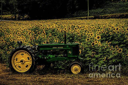 Barbara Bowen - John Deer Tractor in Sunflower field