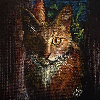 Johnny Cat by Holly Whiting