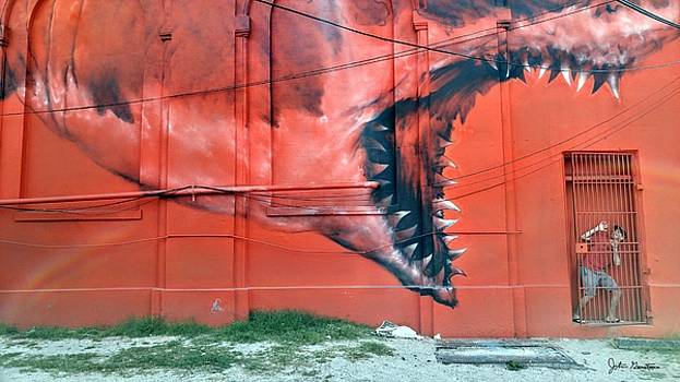 John Gerstner - Jonah and the Whale Deja vu