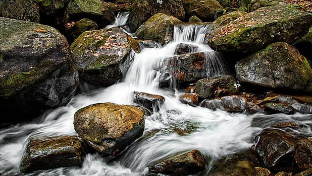 Jones Gap State Park by Dustin Ahrens