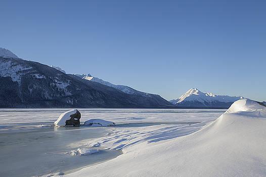 Jones Point in Winter by Michele Cornelius