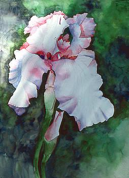 Jon's iris by Eunice Olson