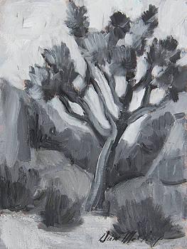 Joshua Tree Black and White Study by Diane McClary