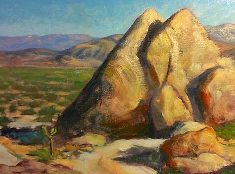 Joshua Tree Boulders by Kevin Yuen