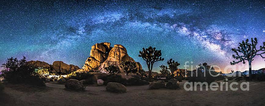 Joshua Tree Milkyway by Robert Loe