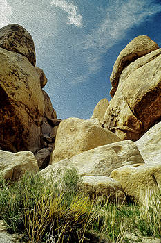 Joshua Tree Titans at the Gates by Steven Howes