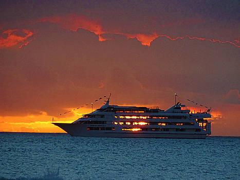 Journey at sunset by Sergey  Nassyrov